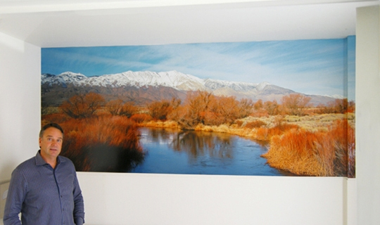 540 Owens River 4x12 ft Mural Primary Color Jan 2011