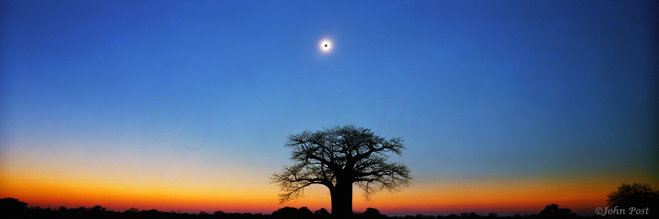 Total Solar Eclipse and Baobab Tree Zimbabwe Africa panorama (c)JohnPost